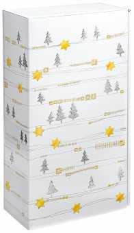 Präsentkarton 2er             WHITE CHRISTMAS