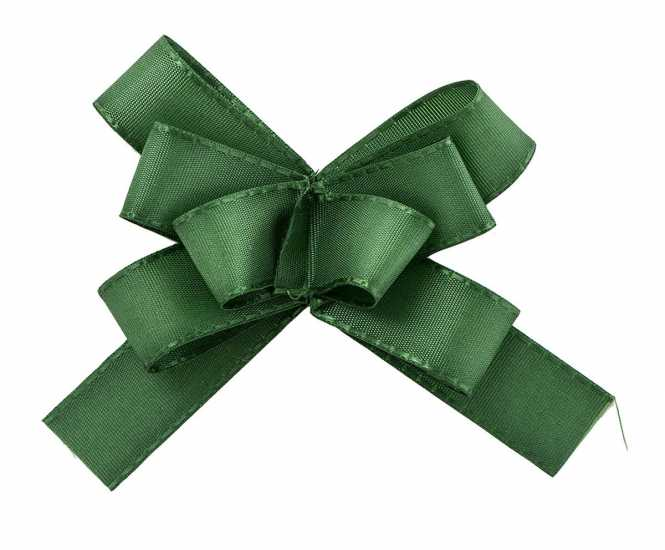 Taft- Fertigschleife Grün     mit Klebepunkt